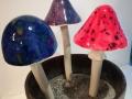 Nya-svampar-2